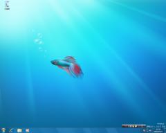 Windows 7 RC: デスクトップ