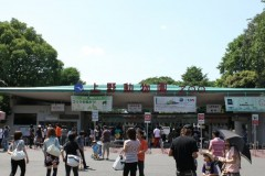 上野動物園: 入口