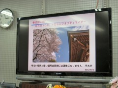 ヨドバシカメラ: 一眼レフカメラ講座: ダイナミックレンジオプティマイザー