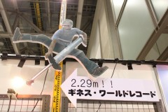 Flybar: ギネス ワールドレコード 2.29m