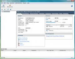 VMware vSphere Client: 3.5
