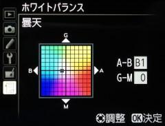 D800: ホワイトバランス: 曇天 B-1
