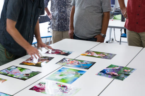 全東京写真連盟 公開審査: 2017年8月: 水元公園分: セレクト 3回目
