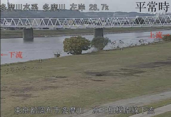 台風19号: 多摩川: 監視カメラの映像: 平常時