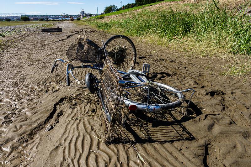 台風19号: 多摩川: 埋まった自転車