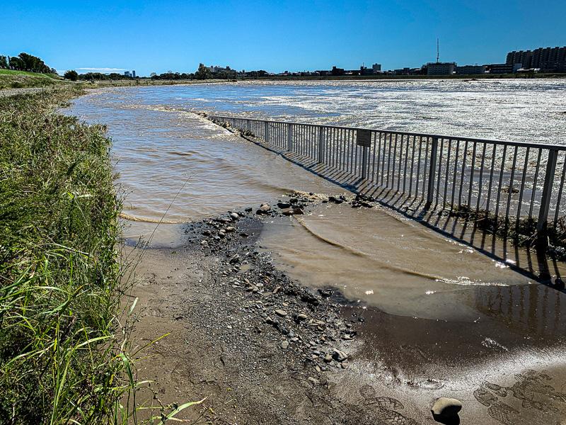 台風19号: 多摩川: 埋まったフェンス