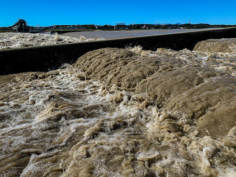 台風19号: 多摩川: 二ヶ領上河原堰: 濁流